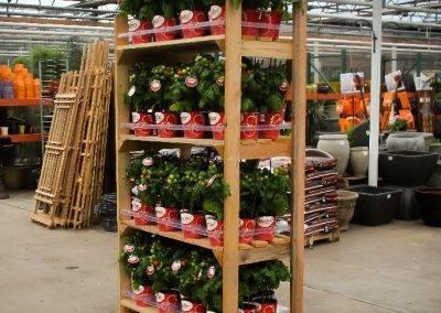 Snacker Tomato Rack Van Wingerden Greenhouses 05